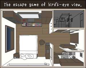 Birds  View on The Escape Game Of Bird   S Eye View   Walkthrough  Comments And More