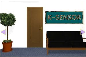 K-Sensor