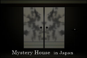 Mystery House in Japan