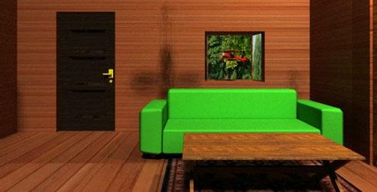 Noho Escape Room